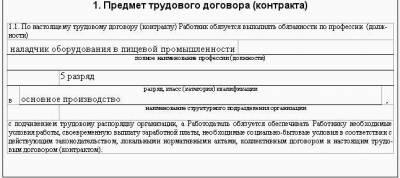 условия оплаты труда в трудовом договоре образец