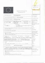 образец заполнения заявления шенгенская