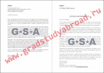 рекомендательное письмо на грант образец
