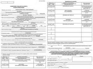образец заполнения анкеты на загранпаспорт на ребенка
